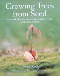 Growing trees from Seeds
