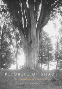 Republic of shade